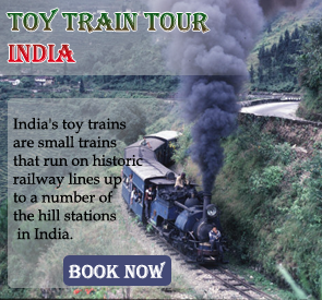 Toy Train India Tour